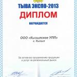 ТЫВА ЭКСПО-2013